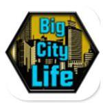 大城市的生活模拟器  v1.4.2 安卓版