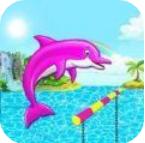 海豚水上表演
