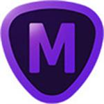 topaz mask aiv1.3.4 绿色免安装版