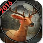 丛林猎鹿2016